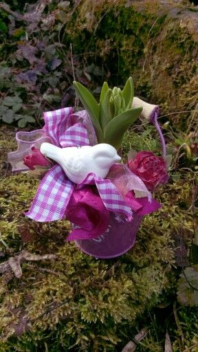 Hyacint v plecháčku