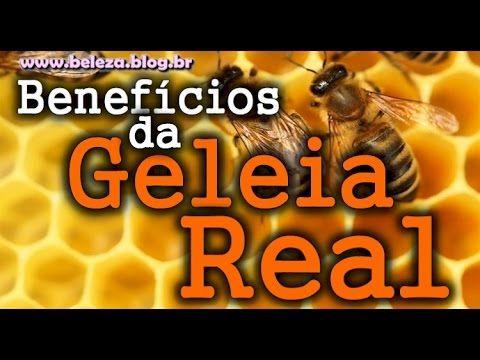→ Geleia Real Todos os Benefícios da Geleia Real e Para que Serve
