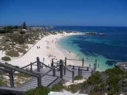 Image result for rottnest island perth