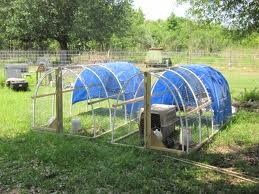 Hoop houses for ducks! We'll do a little bigger than that but similar style I think. Want to have turkeys, too!