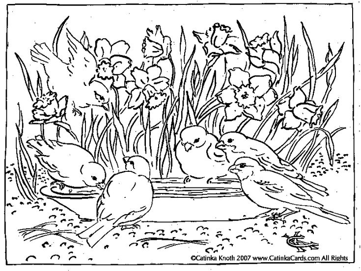 springtime pictures az coloring pages