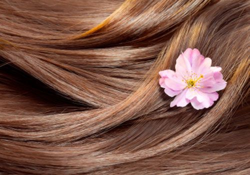 Just like skin, the condition of your hair is an outward sign of inside health. The cells that make up each strand of hair require a regular supply of key nutrients.