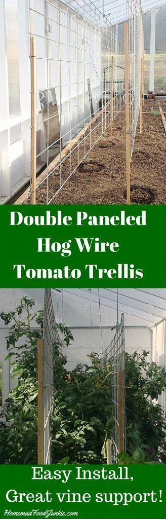 Double Paneled Hog Wire TomatoTrellis