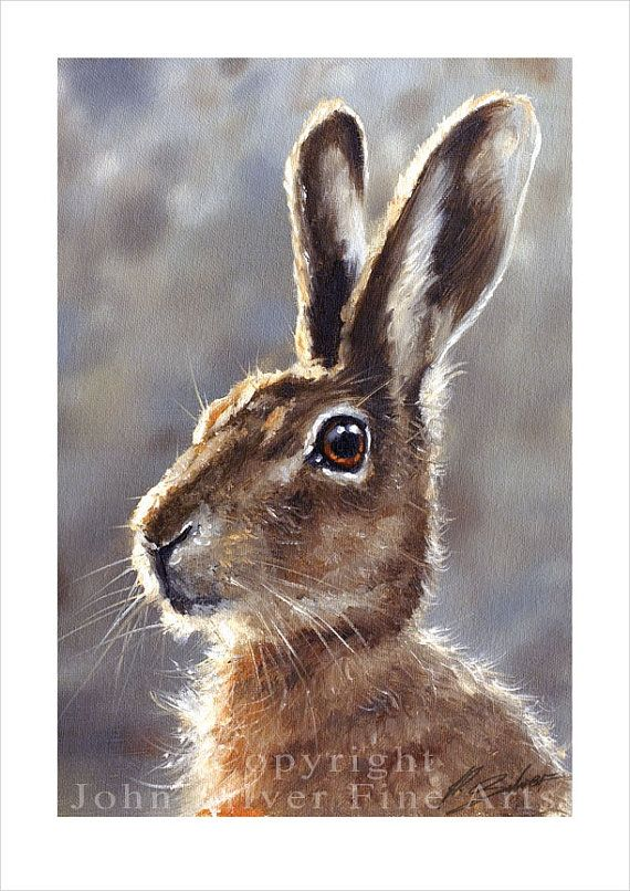 WILD HARE PORTRAIT- Signed Print by Award winning artist John Silver! This is a highly detailed, beautiful and stunning Print. Personally