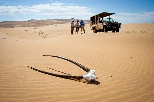 edVenture Retreat safari venue Namibia.