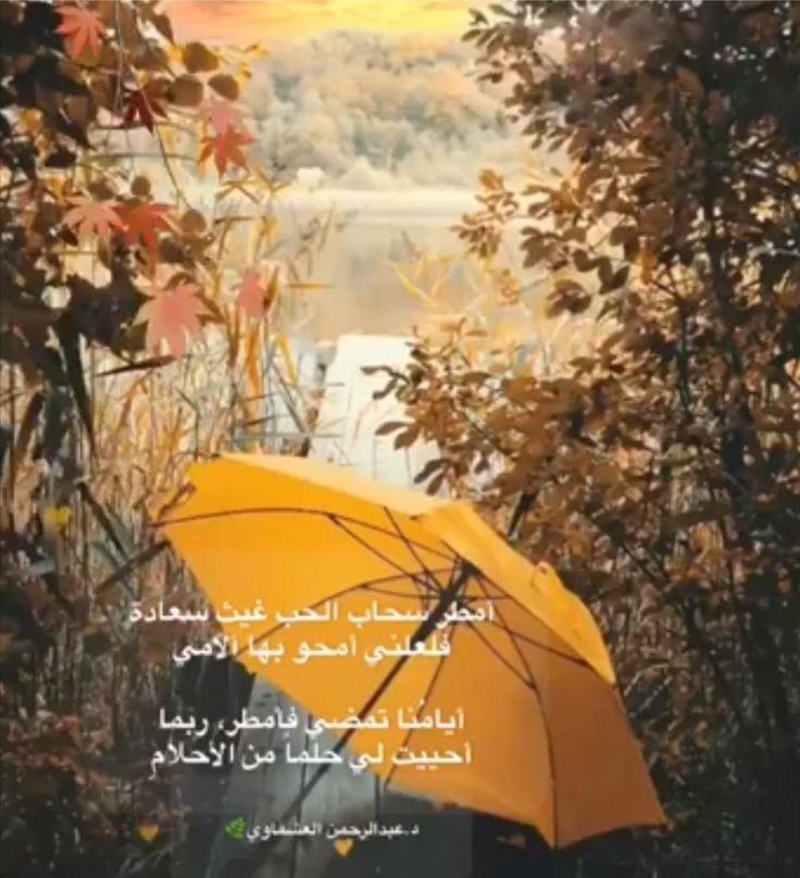 أمطر وصب الحب صبا مطر حب شعر Umbrella Fashion
