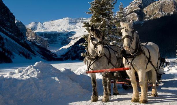 Winter Sleigh Rides | Brewster