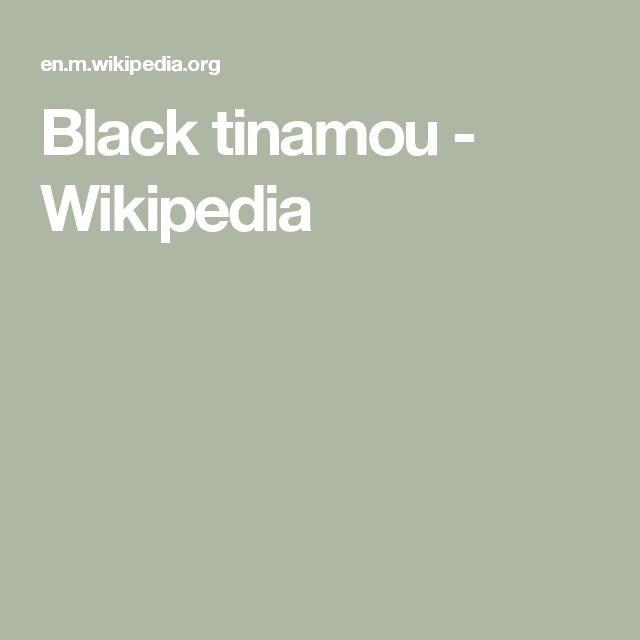 Black tinamou - Wikipedia
