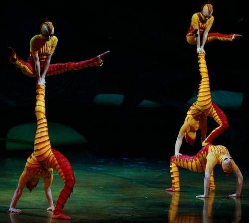 ovo cirque du soleil pictures acrosport
