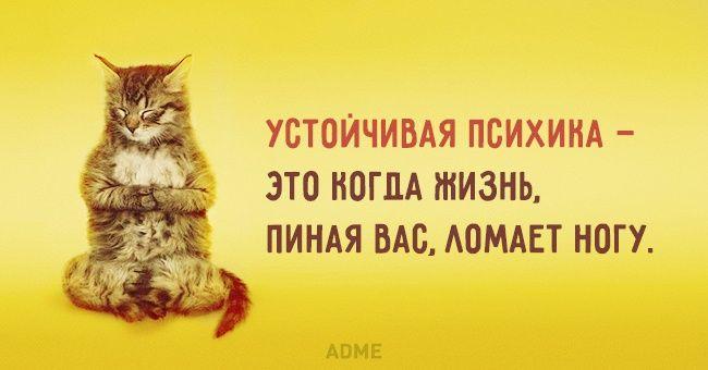 http://www.adme.ru/cards/ustojchivaya-psihika-1022060/