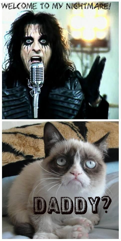 Image detail for -Grumpy Cat Daddy? | Grumpy Cat Meme | Grumpy Cat Pictures