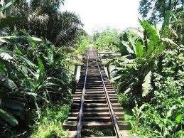 Ferrocarril en Puerto Limón