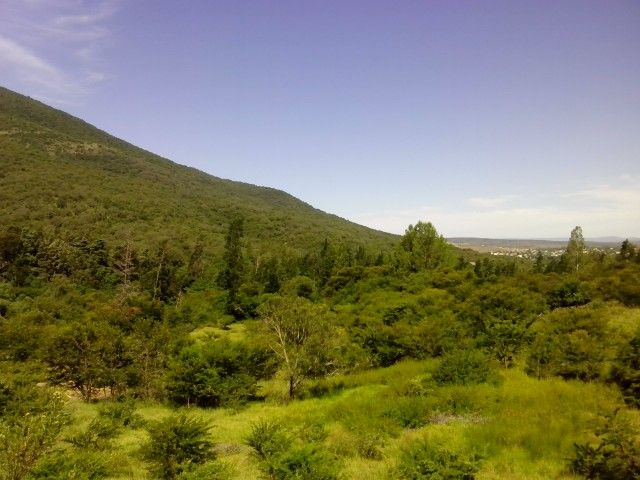 Somerset East Eastern Cape