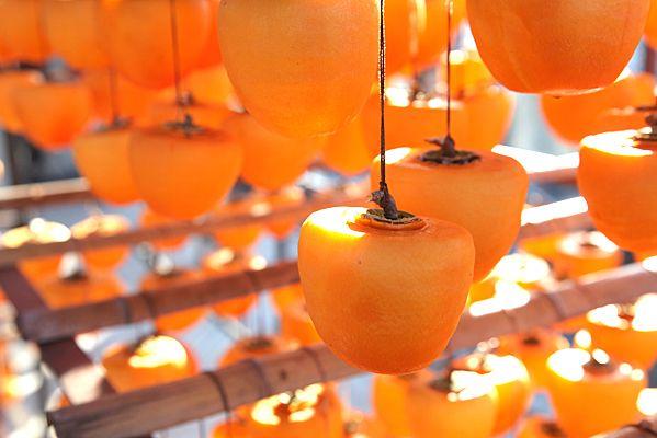 12. 大和のつるし柿【奈 Dried persimmon from Nara. 12 culinary delights from Kyoto/Nara.