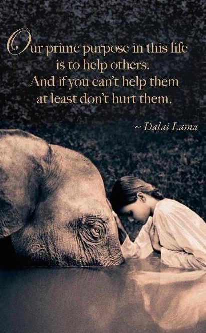 Il nostro primo proposito nella vita è quello di aiutare gli altri. Ma se proprio non si riesce ad aiutarli proviamo almeno a non creargli danno.