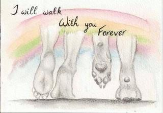 I will walk with you forever