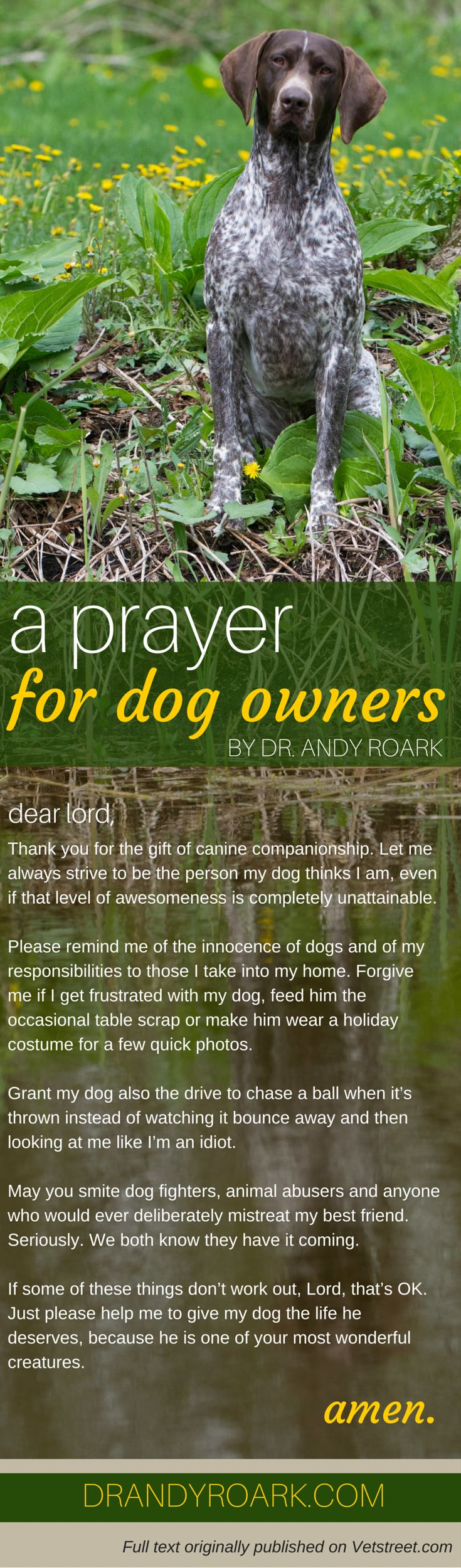 Dr. Andy Roark's prayer for dog owners. Share with any veterinarian, vet tech or pet lover. <3