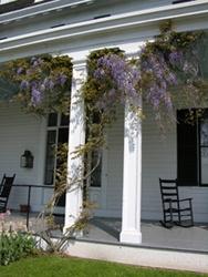 1000 Images About Porch Columns On Pinterest Front