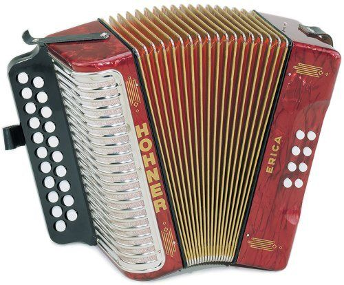 18 best Accordions images on Pinterest | Button accordion ...