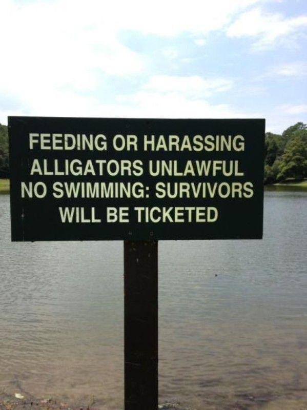 No Swimming With Alligators - http://lol4eva.com/funny/no-swimming-with-alligators/