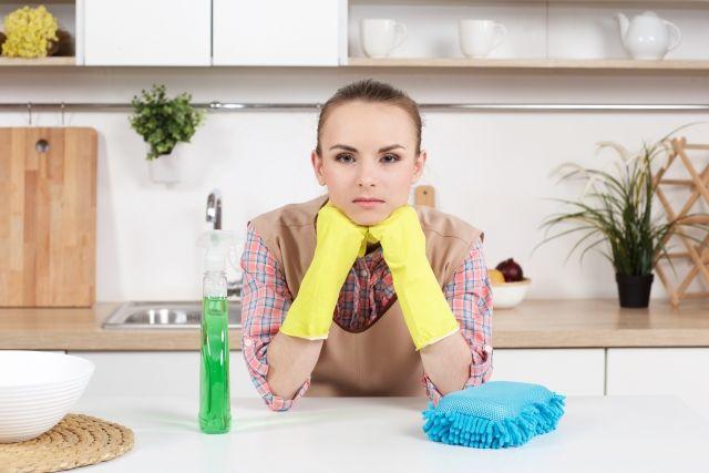 タカラスタンダード オフェリアのキッチンを徹底紹介 2年使ってみた感想 ママブログcheerful Mother タカラスタンダード 家事 代行 キッチン