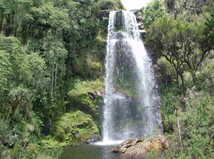 places to visit in the african rainforest