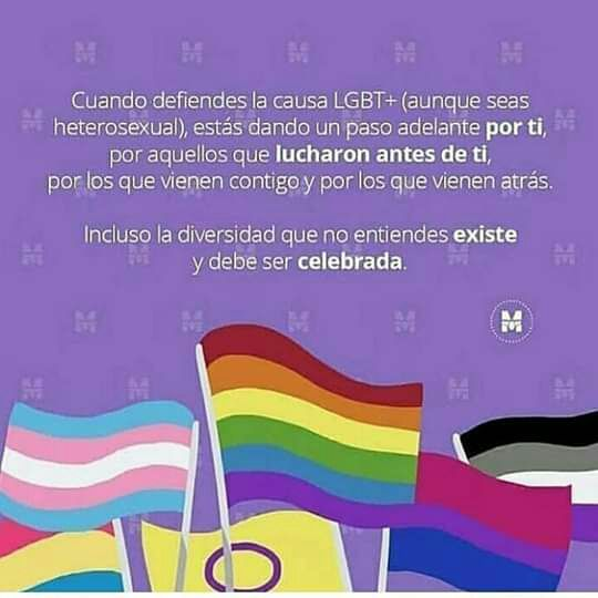 Read from the story memes LGBT uwu by with reads. Bisexual Pride, Gay Pride, Frases Lgbt, Lgbt Love, Motivational Messages, Phobias, Tumblr Funny, Bunt, Lesbian