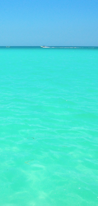 Isla Holbox, Yucatan Mexico. Caribbean Mexico is where you find these incredible colours.