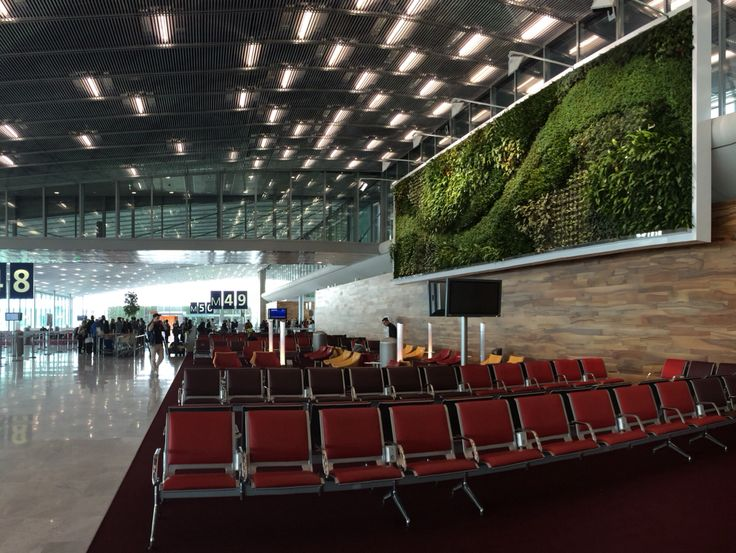 Gorgeous indoor plant wall - CDG Airport, France