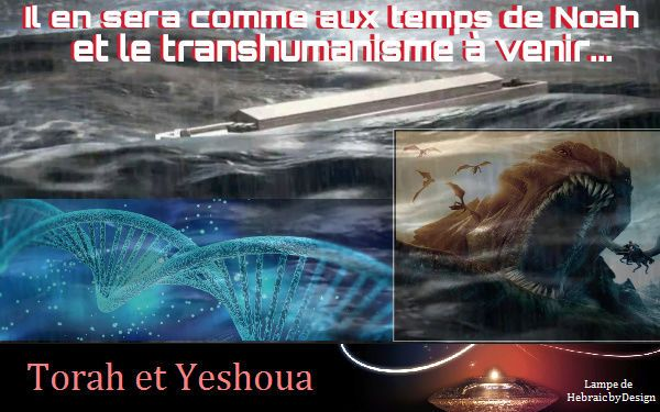 Comme aux temps de Noah et transhumanisme à venir... - Ephraïm et Juda en Yeshoua