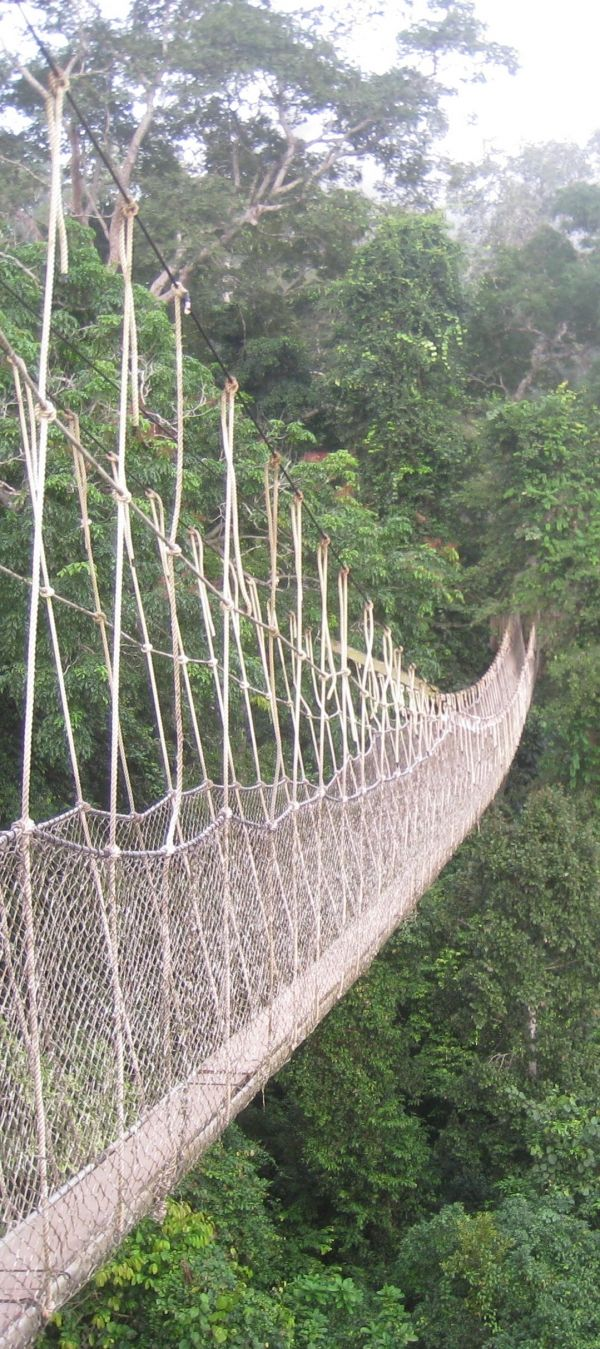 Ghana national park! www.facebook.com/loveswish