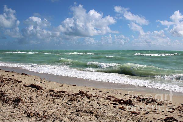 #beach #beachthemed #beachdecor
