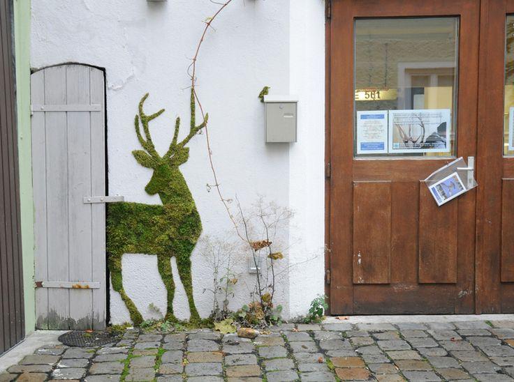 Graffiti d'un cerf fait en mousse végétale pour décorer un mur pas très beau - tutoriel