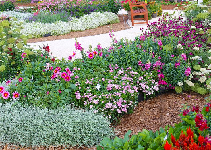 16 best Garden Design Tips from Costa Farms images on Pinterest