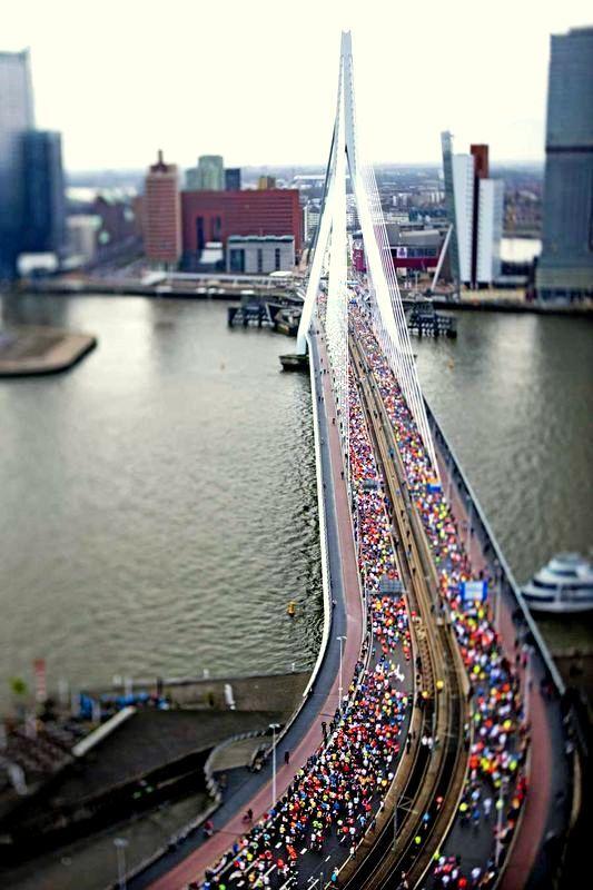Rotterdam - De Marathon van 2013