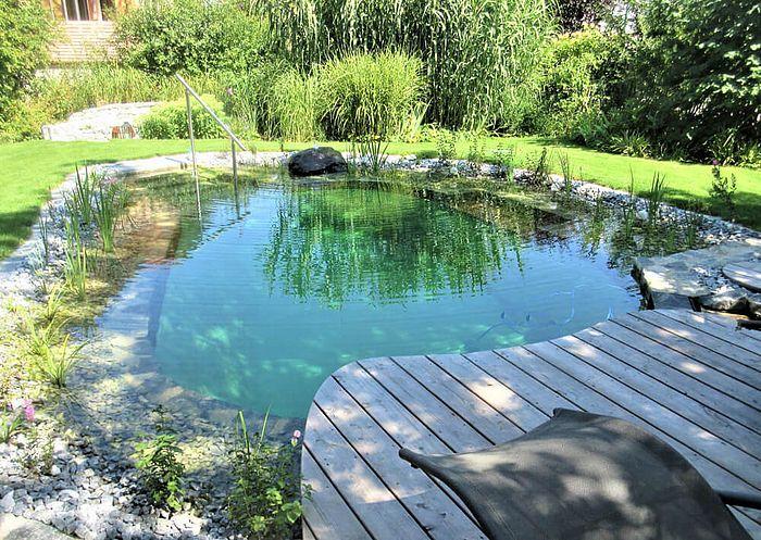 Kleiner Schwimmteich In Der Morgensonne In 2020 Schwimmteich Naturschwimmbecken Natur Pool