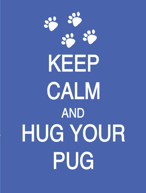 Keep Calm and Hug Your Pug any breed Poster by PostersPersonalized, $17.00