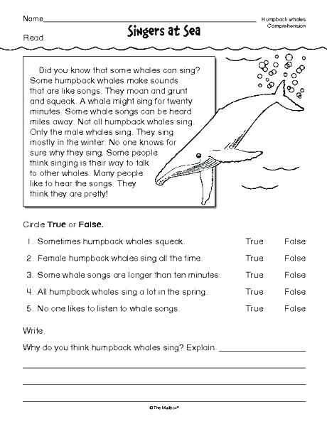 8th Grade Reading Worksheets | Free reading comprehension ...