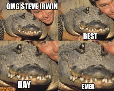 Steve Irwin, an Australian recognised worldwide for his animal shows with crocodiles. Died at the hands of a stingray.