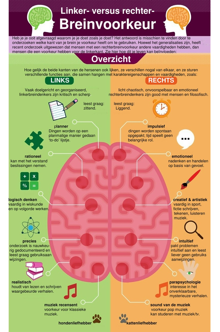 breinvoorkeur deel 1 boven