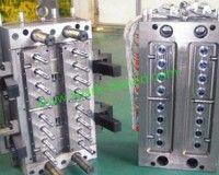 Multiple Cavities Plastic Mold, Plastic Mold Making