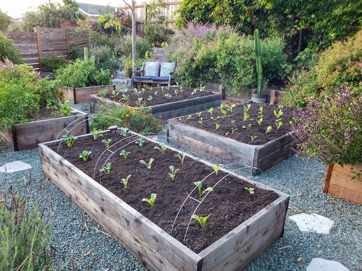 How to Prepare & Amend Garden Bed Soil Before Planting or