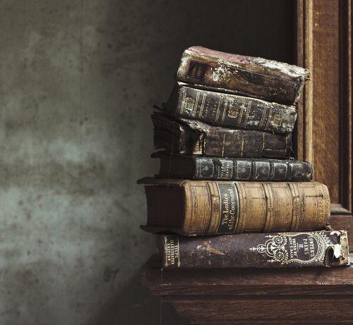 """""""Ich wuchs inmitten von Büchern auf und gewann auf zerbröselnden Seiten, deren Geruch mir noch immer an den Händen haftet, unsichtbare Freunde.""""                                           Carlos Ruiz Zafón, """"Der Schatten des Windes."""""""