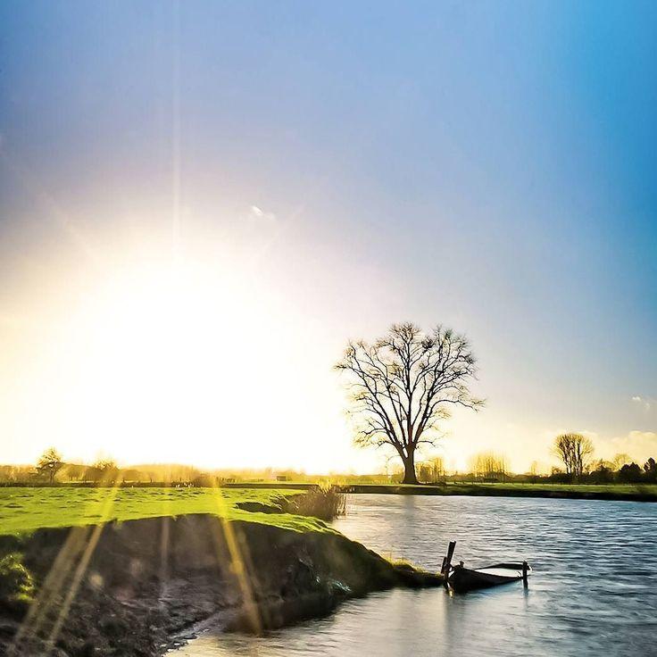 De eenzame boom... aan de #leie #deinze #flanders oude Leie arm #sunrise #water #tree #belgium by deinzeonline
