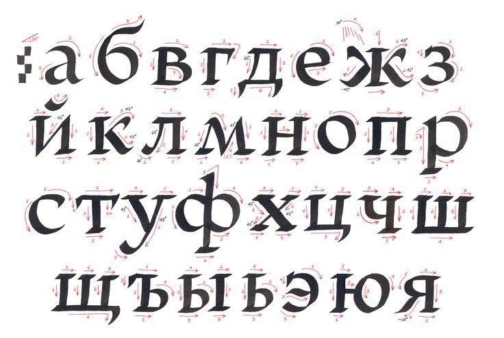 Cyrillic with a broad-nib pen by Vera Evstafieva