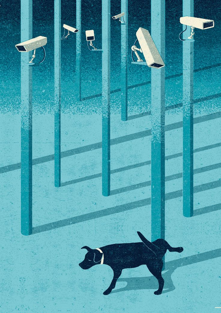 http://www.angelomonne.com/d/dr/pictures/shrinking_privacy_editorial_illustration.jpg