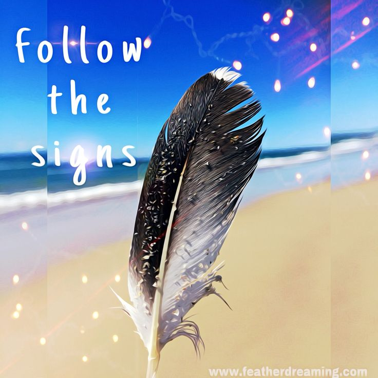 follow the signs ...