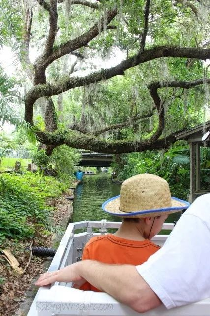 17 best images about family travel in florida on pinterest for Winter vacations in florida