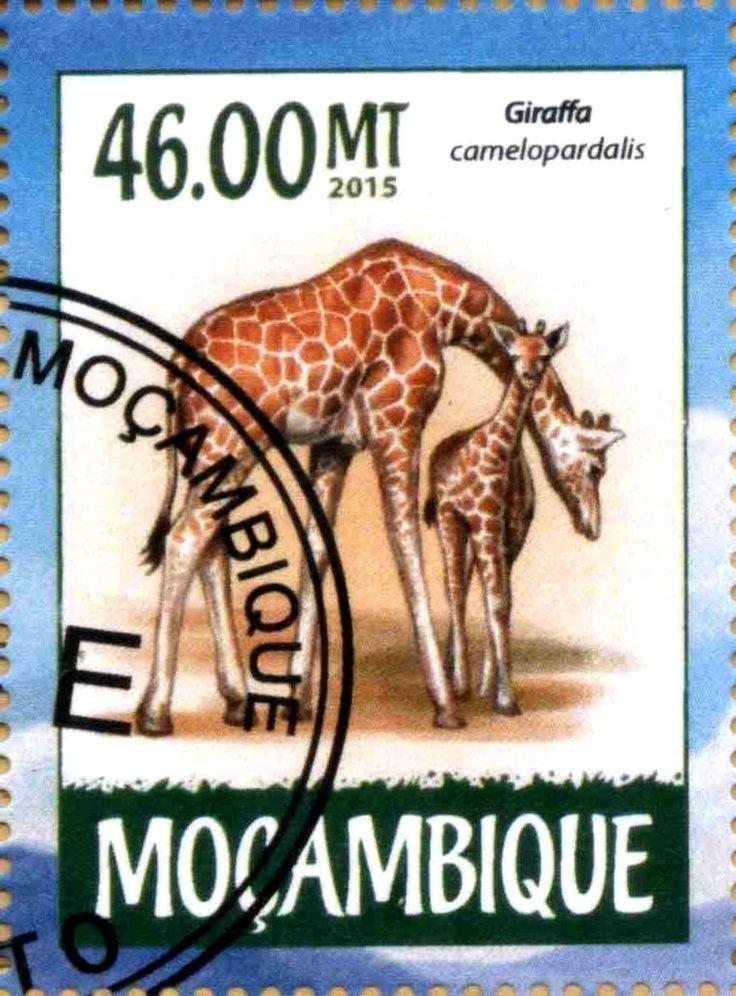 Stamp: Giraffa camelopardalis (Mozambique) Col:MZ 2015-03/1