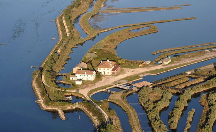 Delta del Po | Po Delta, Emilia-Romagna, Italy | #VearHausing for your vacation in Lidi Ferraresi www.vear.it